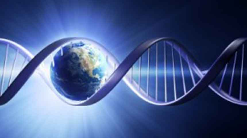 New Earth DNA